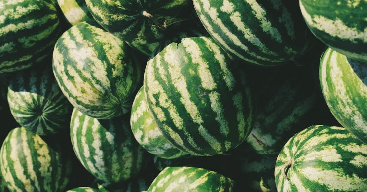 Listening to Traditional Nigerian Music Can Help You Pick a Ripe Watermelon