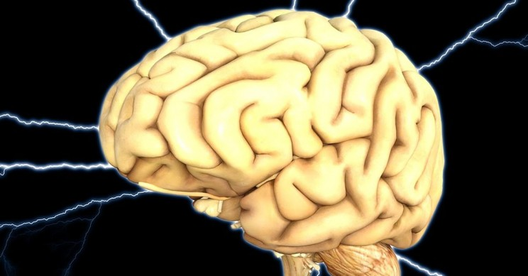 LED Devices Could Increase Memory Retention In Astronauts