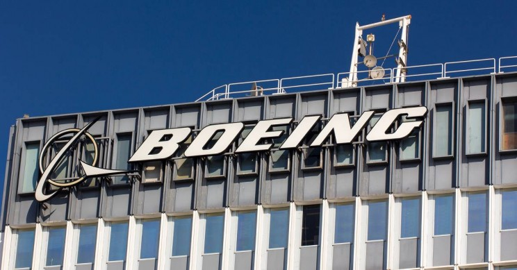 A Bird Strike May Have Caused the Boeing Crash, Say US Aviation Officials