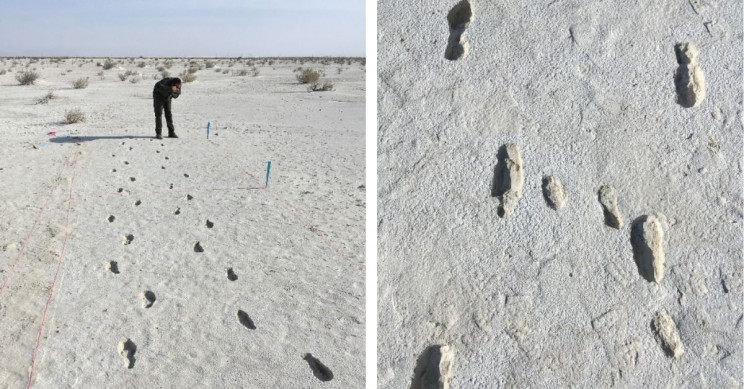 10,000-Year-Old Tracks Unveil the Perilous Journey of Two Humans