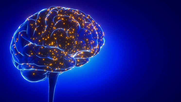Stimulating Your Brain With Magnets Can Help You Remember Things