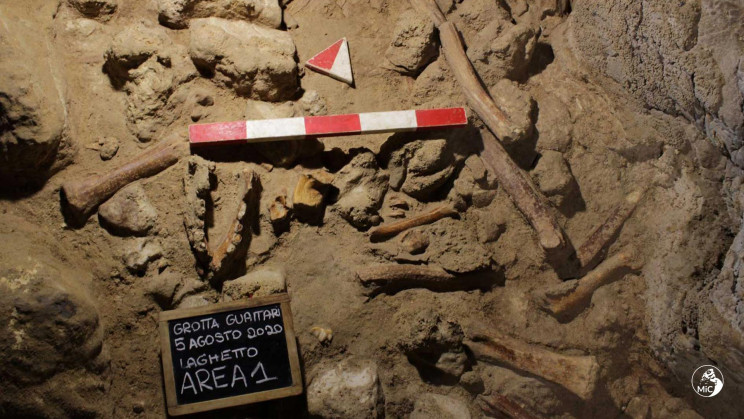 A Rare Discovery: Fossils of 9 Neanderthals Uncovered Near Rome