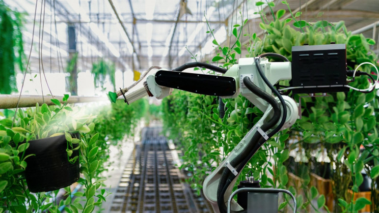 Fully Automated 'Hands-Free' Farm Will Replace Workers With Robots and AI