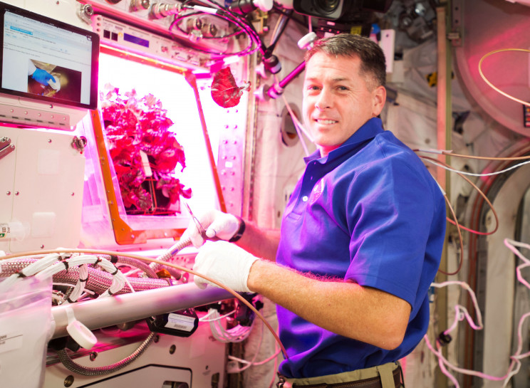 5 Ways We Can Grow Food for Future Space Colonies