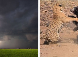 These 7 Videos Prove How Powerful Nature Is