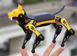 Meet Petoi Bittle: The Future of Robotic Pets