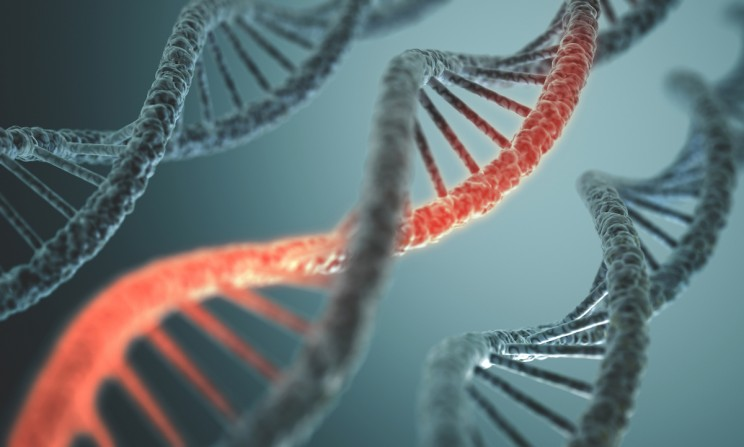 """Jumping Genes"" Directly Inserted into DNA Thanks to CRISPR Enhancement"