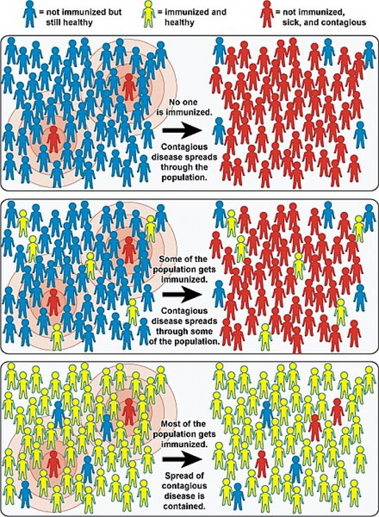 An example of how herd immunity works