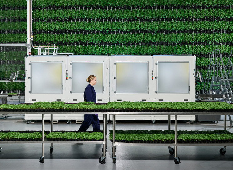 Vertical Farms Run by AI and Robots To Solve the Land Crisis