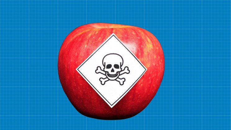The Most Dangerous Foods in the World