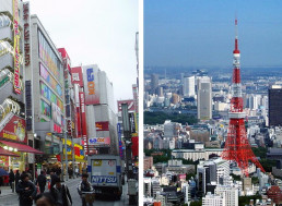 A Very Brief Engineer's Tourist Guide to Tokyo