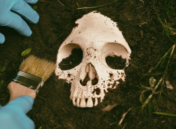 Dead Bodies Continue to Move for Over a Year, Forensic Scientists Discover