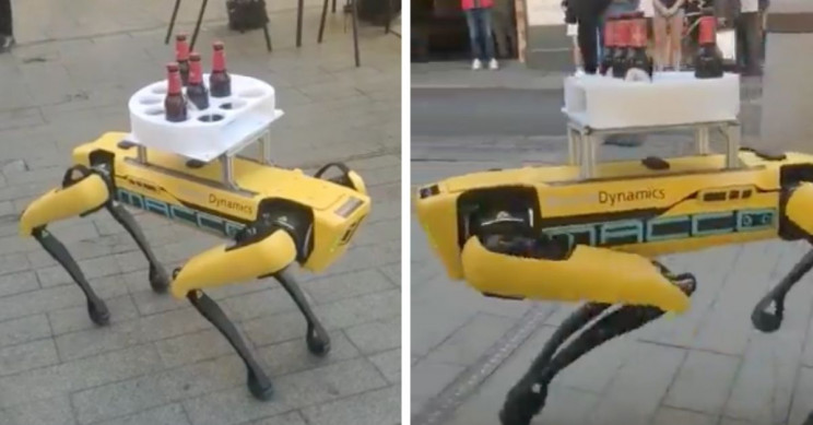 Spot the Robot Spotted Serving Beers in Sevilla, Spain