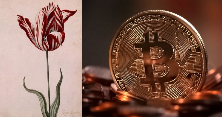 What Do Bitcoin and Tulip Mania Have in Common?