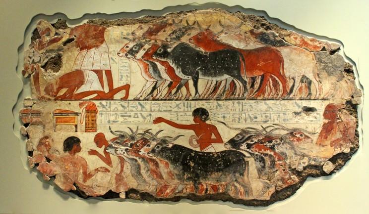Egyptology 101: How To Become An Egyptologist