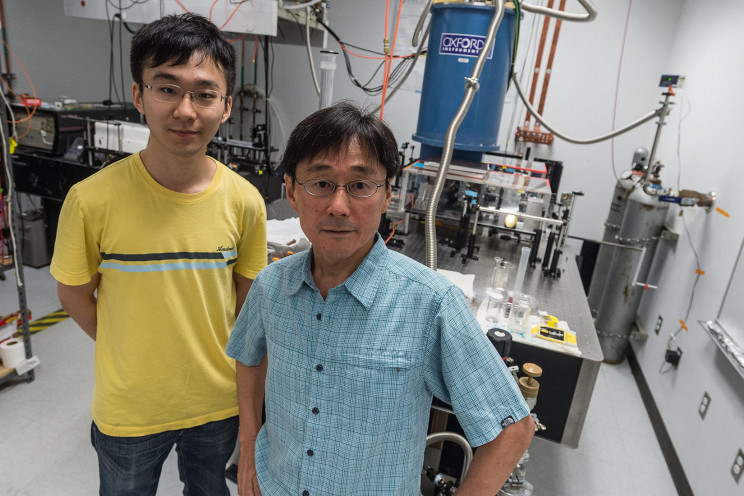 New Study Discovers Billions of Entangled Electrons in a Metal