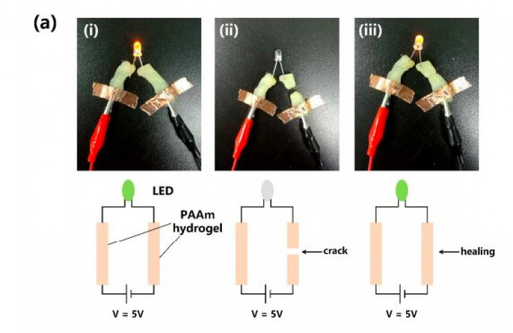 Hang, et al. Tongji University Nano Energy