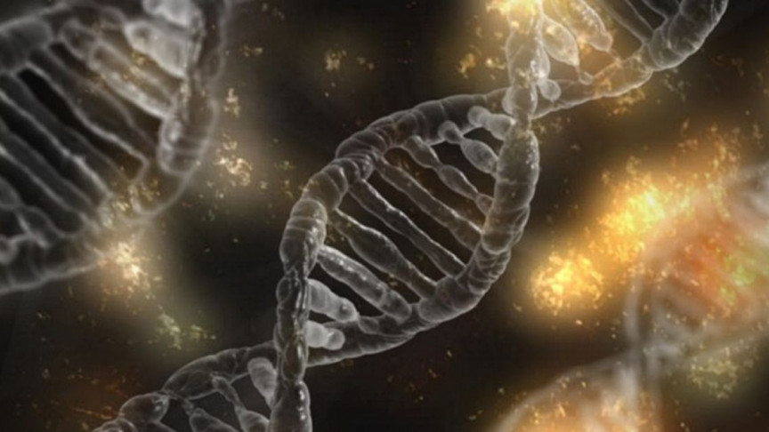 Hacking Ourselves: The Promise of Gene Therapy