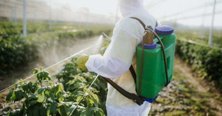 EPA refuses to ban pesticide tied to children's health problems