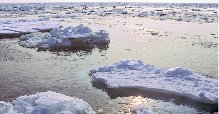 The Suffering of Alaskans Highlighted In Arctic Report Card