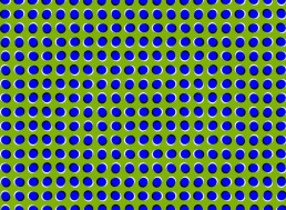 Optical Illusions Only Work Because Your Brain Takes Constant Shortcuts