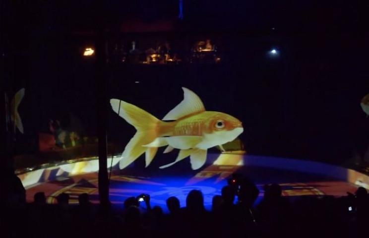 Cruelty-Free Circus Uses Holograms Instead of Real Animals