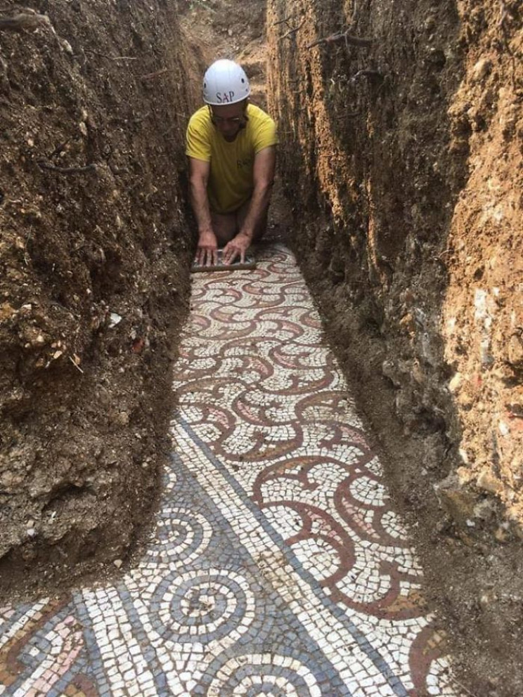Stunning Roman Mosaic Floor Found Intact Under a Vineyard in Italy