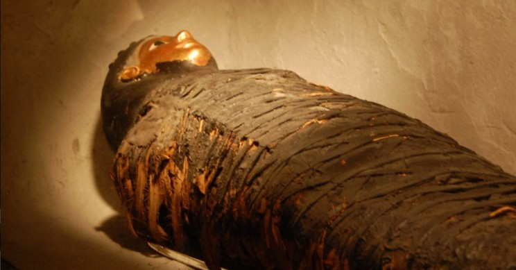 The Unusual Mummification Examples Reflect the Craze for the Afterlife in Different Eras