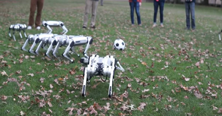 MIT's Mini Cheetah Backflipping Robots Pop Out of Leaves and Play Soccer