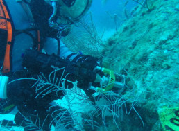NASA and the ESA Shows off Technology for New Underwater Adventure: The Internet Loves It