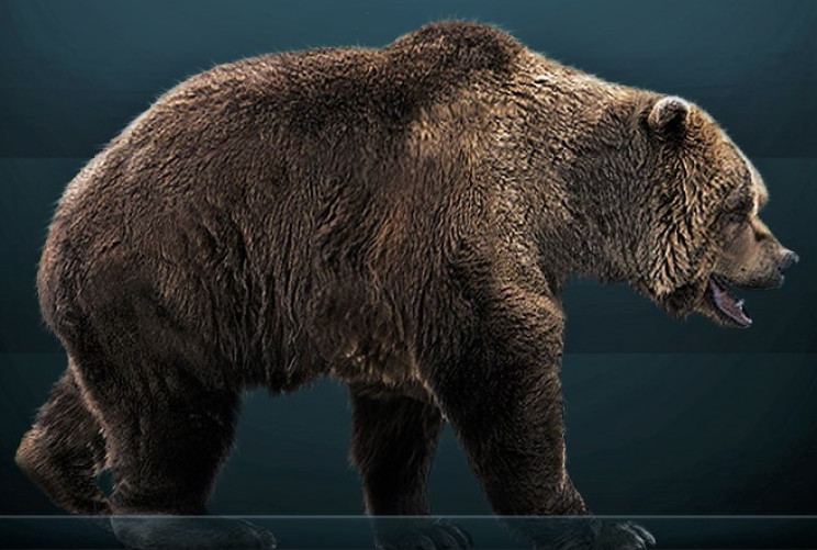 What the cave bear looked like when alive