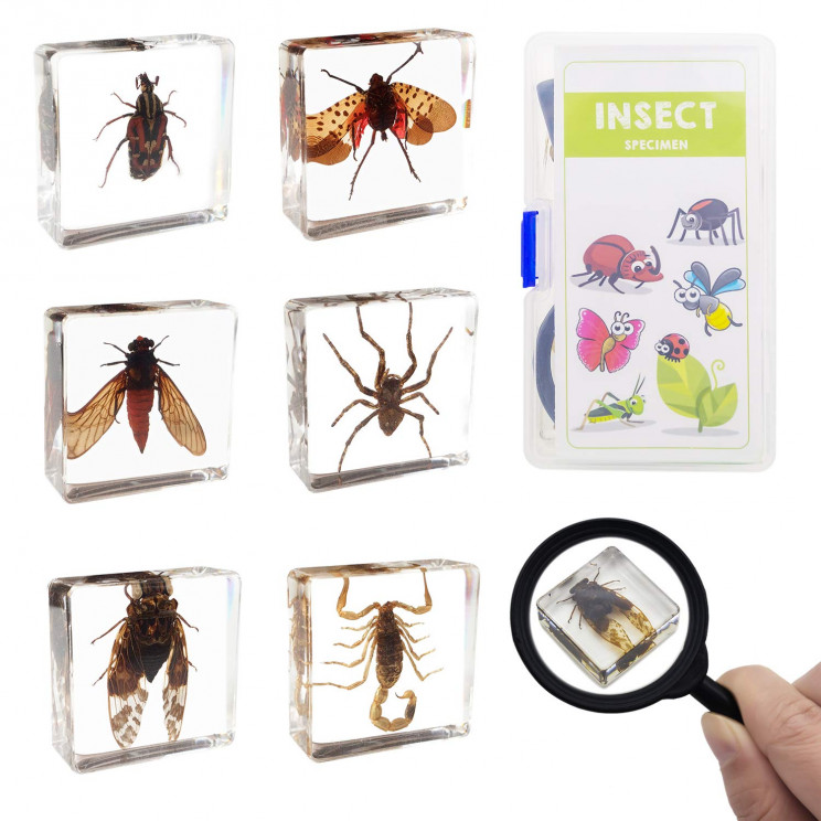 science toys for kids bugs