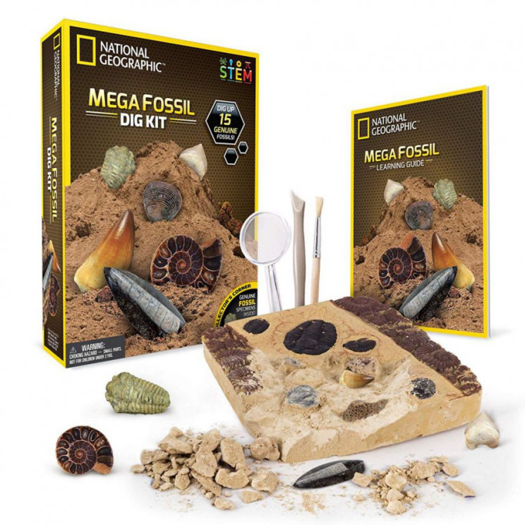 science toys for kids fossil dig