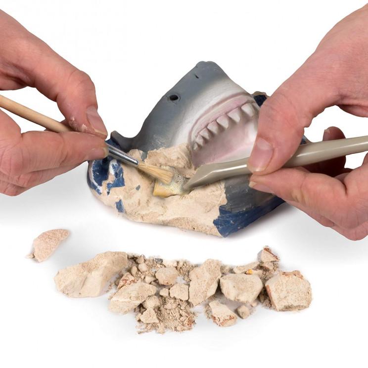 science kids toys shark teeth