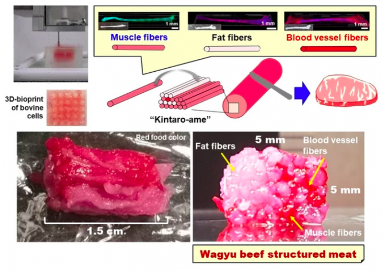 Scientists Reveal World's First 3D-Printed, Marbled Wagyu Beef