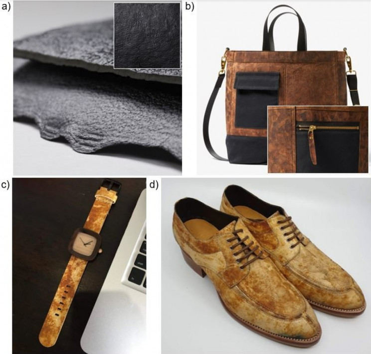 Fungi-Leather, An Environmentally Friendly Alternative