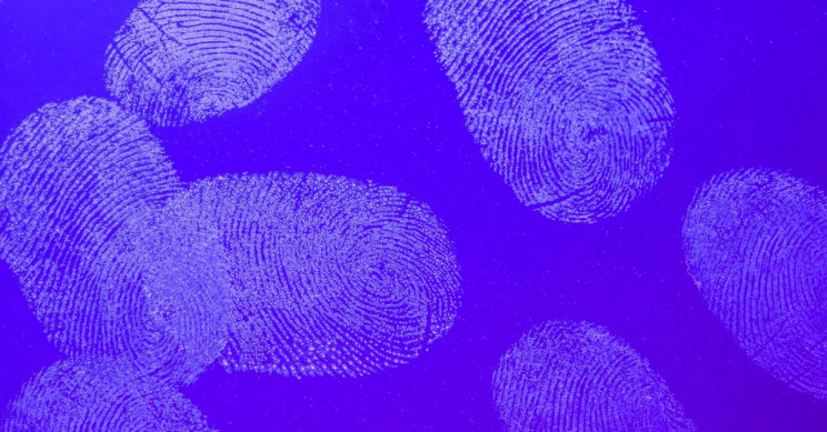 How Fingerprints Can Provide Information on Your Lifestyle, Habits, and Health