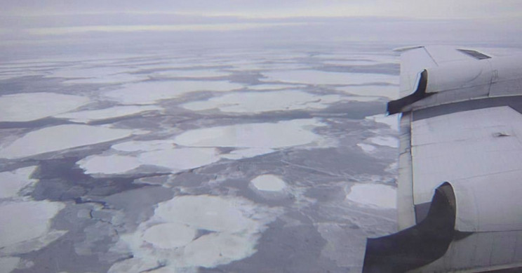 Arctic's 'Last Ice Area' at Rising Risk Amid Climate Crisis, Scientist Says