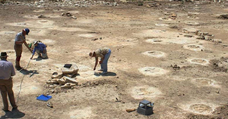 Giant Dinosaur Tracks Stump Paleontologists to Believe Sauropods Did Handstands