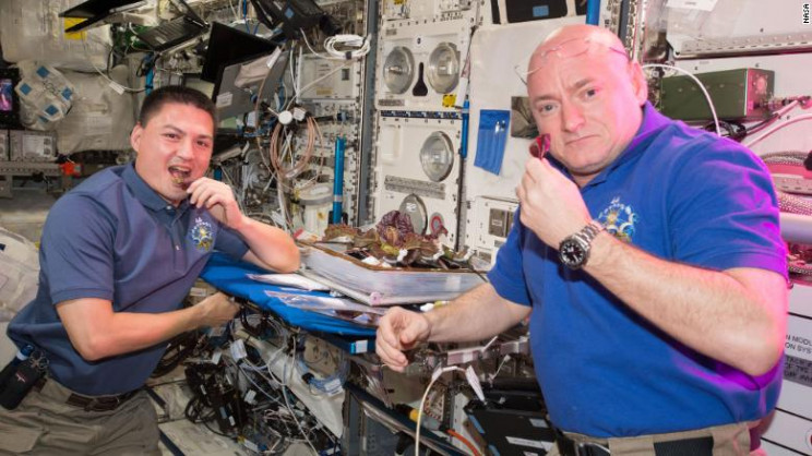 Crucial Development for Future NASA Missions: Lettuce Grown in Space Is Nutritious and Tasty