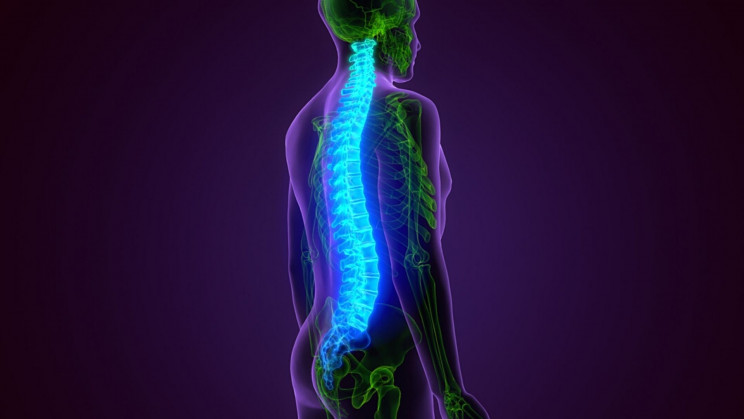 Scientists Use Stem Cell Therapy for Spinal Cord Injuries
