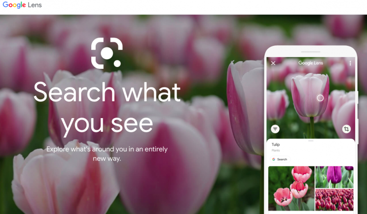 Google's Updated App May Allow Online Searches through Direct Screenshots