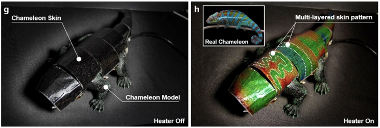 This Color-Shifting Robot Chameleon Could Soon Blend Into a Wall Near You