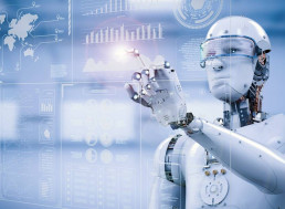 AI Attitudes: What the Experts Consider of Concern