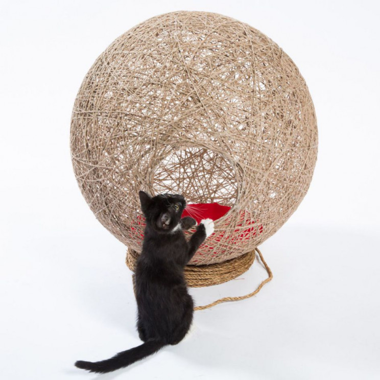 cathouse ball of twine