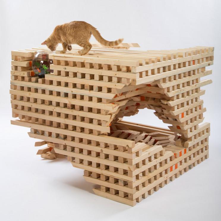 cathouse catscape