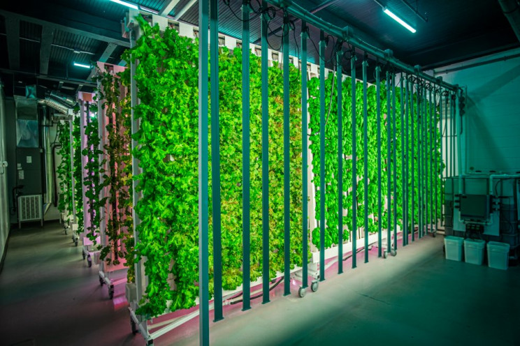 vertical farms zipgrow