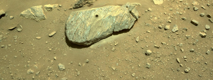Perseverance can bring living Martian organisms to Earth.  But is it safe?