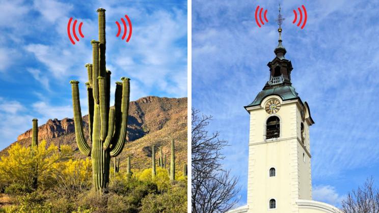 The Weird World of Hiding 5G Technologies In Plain Sight