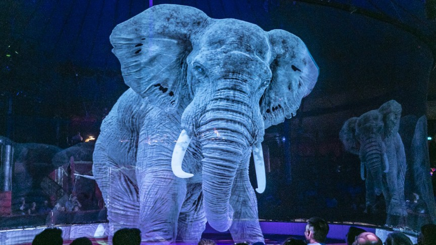 Image result for Cool, Circus in Germany No Longer Use Animals, Replaced Holograms!
